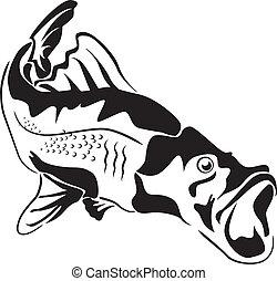 Grandes peces depredadores