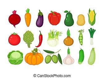 Grandes vegetales diferentes. Ilustración de vectores aislada en el fondo blanco.