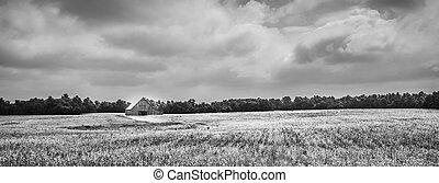 Granero en campo de soja