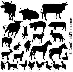 granja, siluetas, conjunto, animal