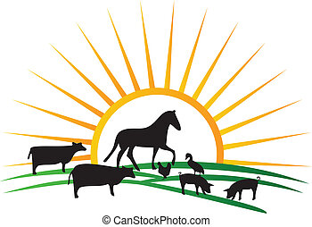 granja, sol, siluetas, vector, animal