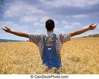 Granjero en el campo de trigo con brazos extendidos