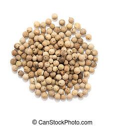 Granos de pimienta blanco