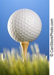 grass., tee, golfball