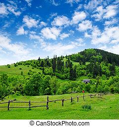 Grassland con cerca y casa rural
