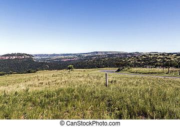 Grassland contra colinas distand y paisaje azul