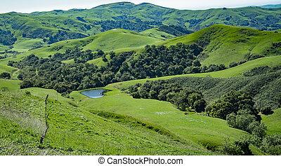 Green Valley, Cambria, California