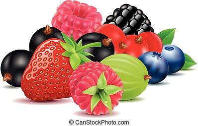 Grupo de fresas, arándanos, frambuesas, moras, grosellas negras y rojas