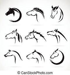 Grupo Vector de diseño de cabezas de caballo sobre fondo blanco.