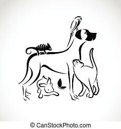 Grupo Vector de mascotas - perro, gato, loro, camaleón, conejo, mariposa aislada en el fondo blanco