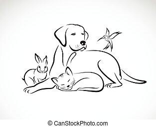 Grupo Vector de mascotas: Perro, gato, pájaro, conejo, aislado en el fondo blanco