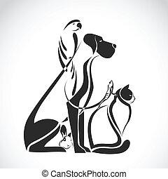 Grupo Vector de mascotas: Perro, gato, pájaro, reptil, conejo, aislado