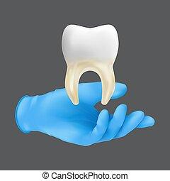 guante, modelo, concepto, tenencia, realista, vector, tejido, injerto, mano, cerámico, suave, ilustración, hueso, protector, tooth., llevando, gris, fondo azul, 3d, aislado, quirúrgico, dentista