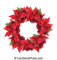 guirnalda, navidad, flor de nochebuena