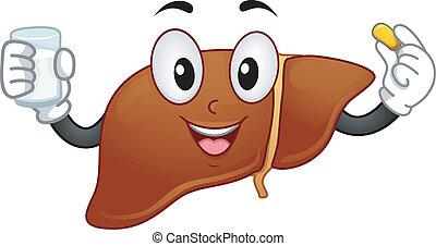 hígado, mascota