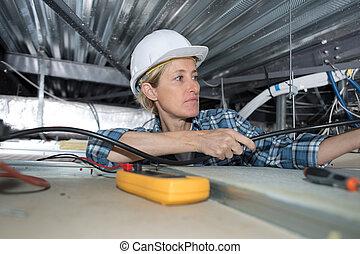 habitación, electricista, grande, cableado, hembra