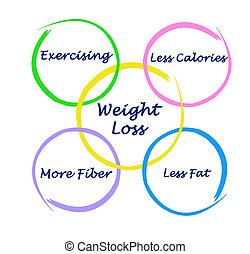 haciendo dieta