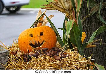 halloween., amarillo, preparando, pasto o césped, leaves., calabaza