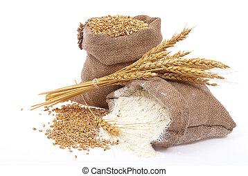 Harina y grano de trigo