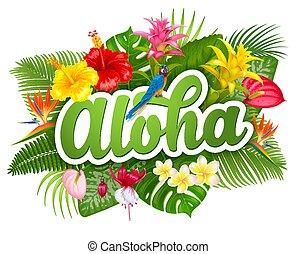 hawai, plantas, aloha, tropical, letras
