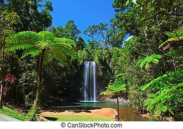Helecho de árbol y cascada en el paraíso tropical de la selva tropical