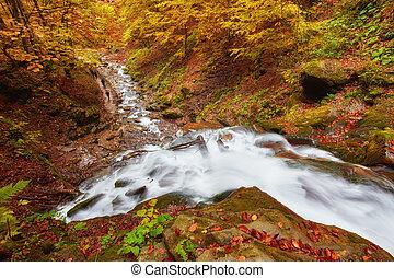 Hermosa cascada en el río montaña en colorido bosque de otoño con hojas rojas y naranjas al atardecer.
