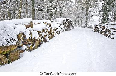 Hermosa escena de nieve invernal con nieve virgen y madera fresca apilada en los lados del camino