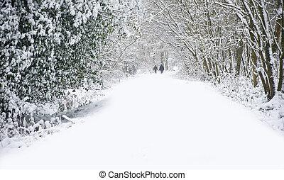 Hermosa escena de nieve invernal con nieve virgen y perros caminando por camino