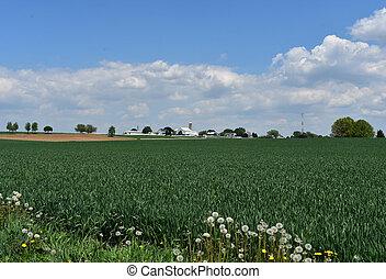 Hermosa granja en Pennsylvania del condado de Lancaster durante la primavera