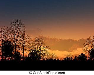 Hermosa puesta de sol