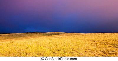 Hermosa puesta de sol sobre el campo dorado
