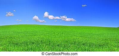 Hermosa vista panorámica de la pradera pacífica