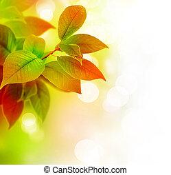 Hermosas hojas