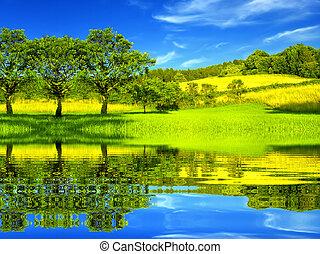 Hermoso ambiente verde