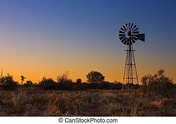 Hermoso atardecer en Kalahari con molino y hierba