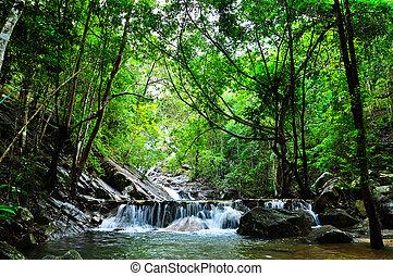 Hermoso bosque