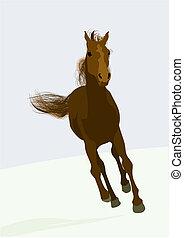 Hermoso caballo de carreras