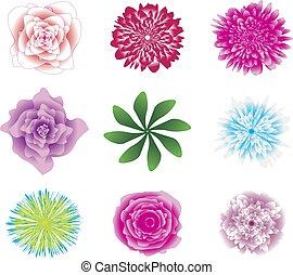 hermoso, flor, illustration., clipart, set., iconos, aislado, coloreado, fondo., vector, flores blancas, hojas