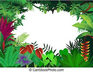 Hermoso fondo forestal