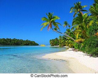 hermoso, isla, aitutaki, un pie, islas de cocinero, playa