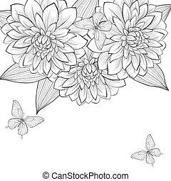 hermoso, marco, mariposas, fondo negro, monocromo, dalia, flores blancas