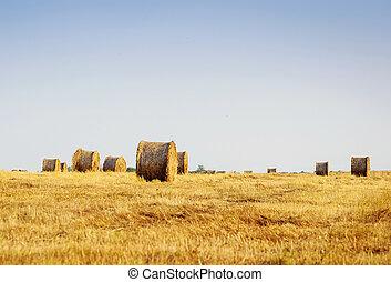 Hermoso paisaje con pacas de paja al final del verano