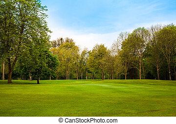 Hermoso paisaje de verano. Campo verde y árboles