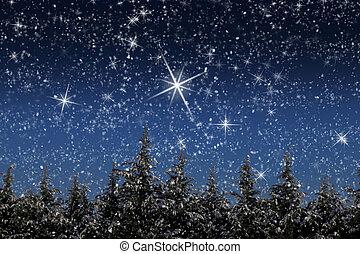 Hermoso paisaje invernal con nieve cubierto de árboles por la noche
