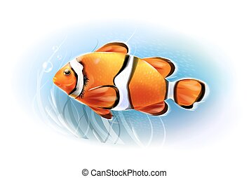 Hermoso pez payaso en el mar. Pescado de acuario. Mundo subterráneo. Ilustración realista.