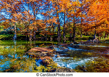 hermoso, río, árboles, otoño
