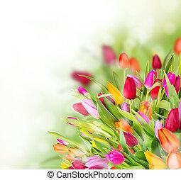 Hermoso ramo de tulipanes con espacio libre para el texto