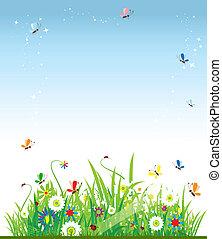 hermoso, verano, pradera