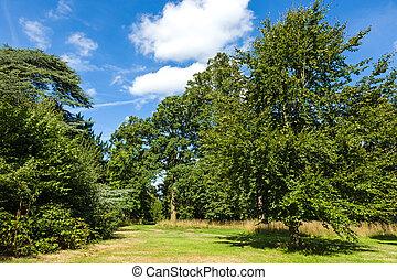 Hermoso y exuberante jardín de Woodland Park