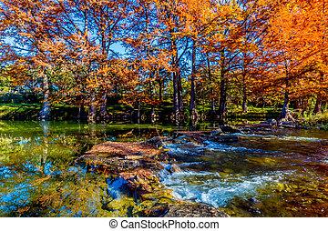 Hermosos árboles caídos en el río